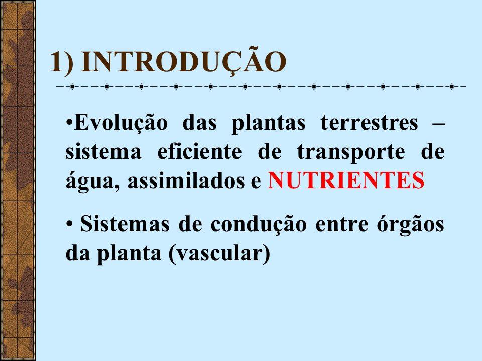 1) INTRODUÇÃO Evolução das plantas terrestres – sistema eficiente de transporte de água, assimilados e NUTRIENTES.