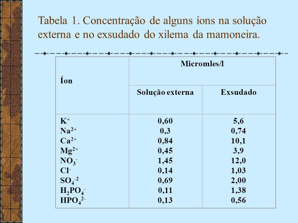 Tabela 1. Concentração de alguns íons na solução externa e no exsudado do xilema da mamoneira.