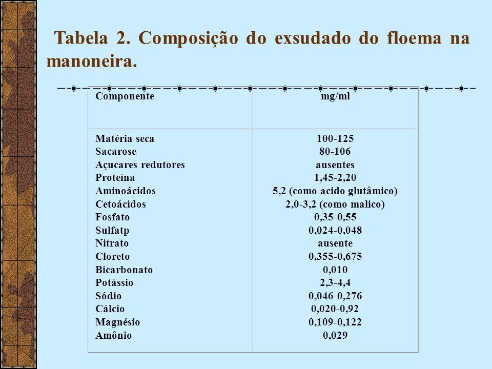 5,2 (como acido glutâmico)