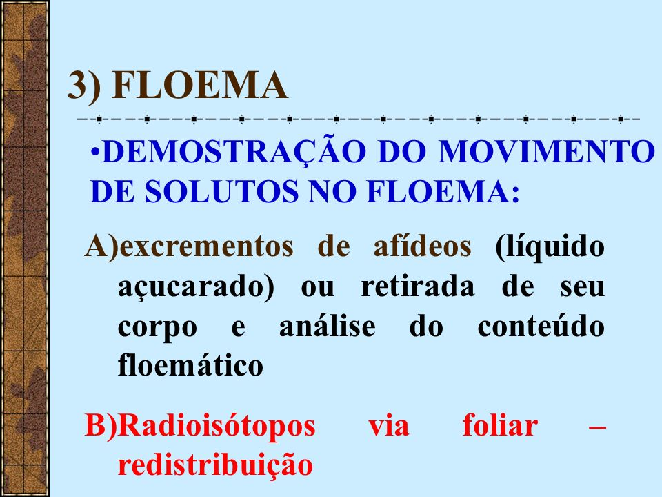 3) FLOEMA DEMOSTRAÇÃO DO MOVIMENTO DE SOLUTOS NO FLOEMA: