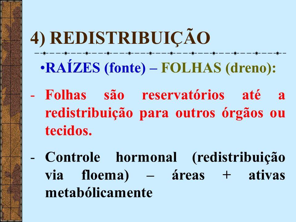 4) REDISTRIBUIÇÃO RAÍZES (fonte) – FOLHAS (dreno):