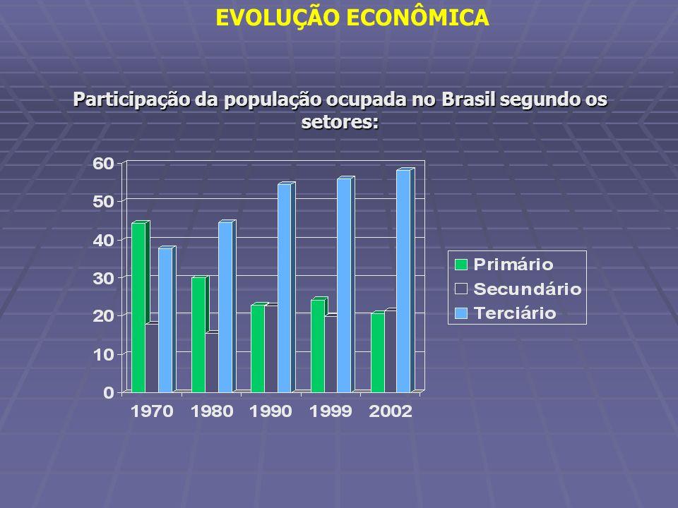 Participação da população ocupada no Brasil segundo os setores: