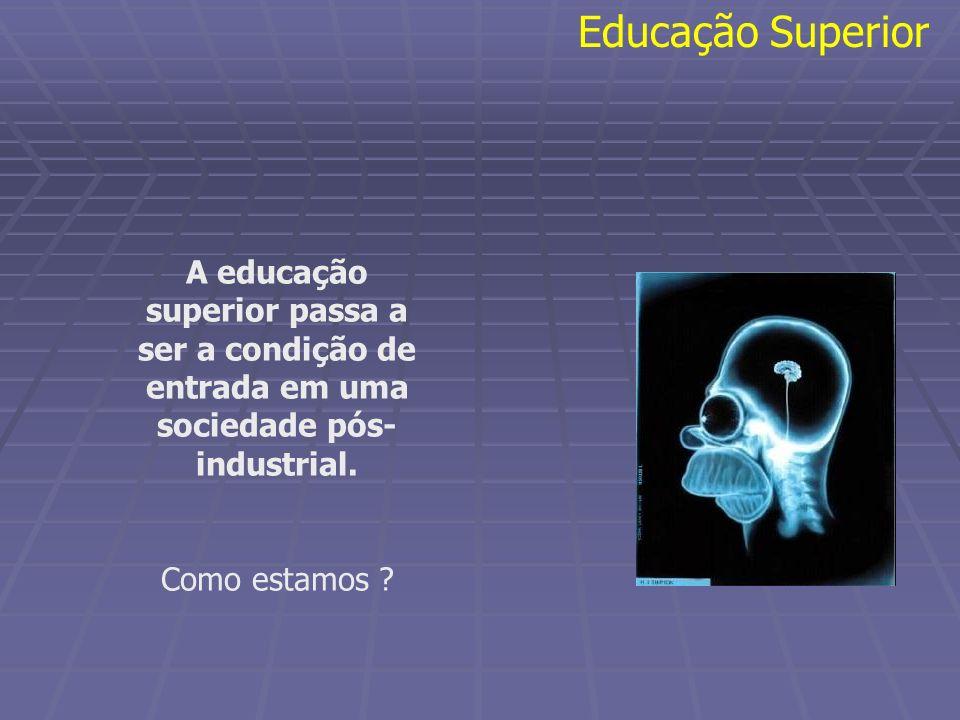 Educação Superior A educação superior passa a ser a condição de entrada em uma sociedade pós-industrial.