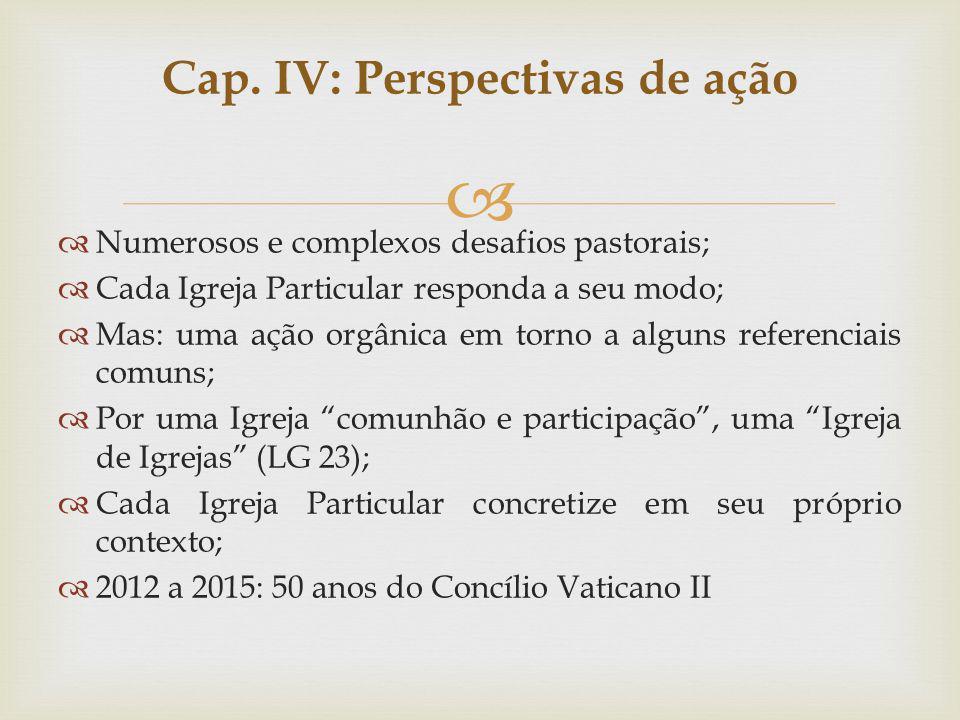 Cap. IV: Perspectivas de ação