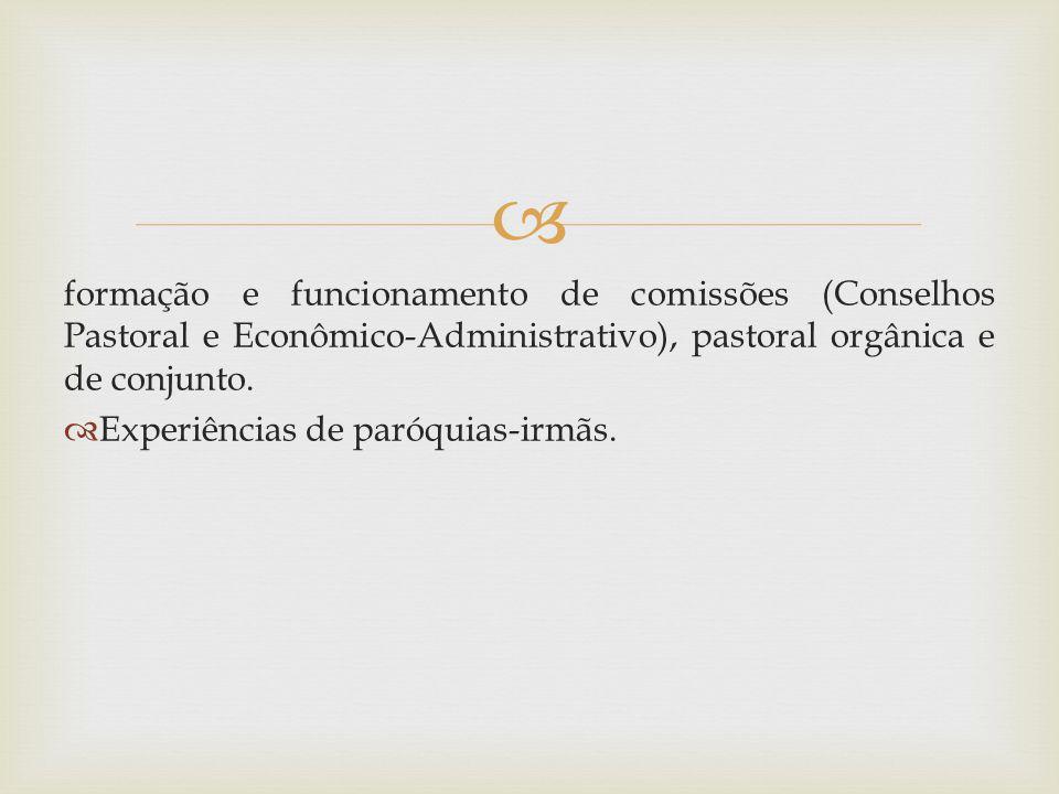 formação e funcionamento de comissões (Conselhos Pastoral e Econômico-Administrativo), pastoral orgânica e de conjunto.