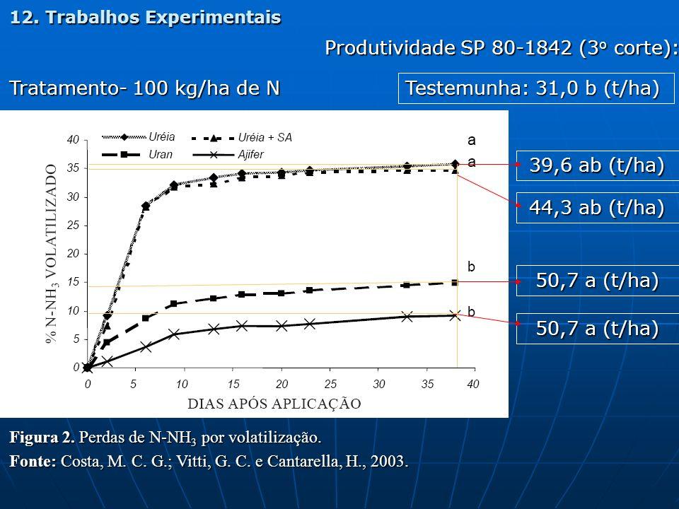 Produtividade SP 80-1842 (3o corte):