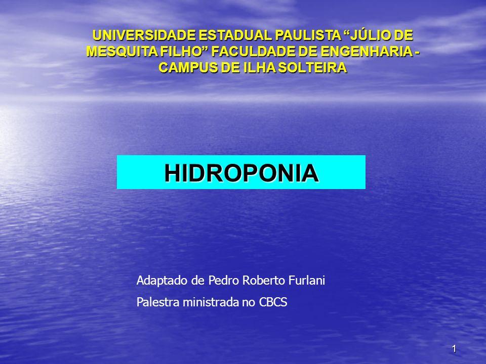 UNIVERSIDADE ESTADUAL PAULISTA JÚLIO DE MESQUITA FILHO FACULDADE DE ENGENHARIA - CAMPUS DE ILHA SOLTEIRA