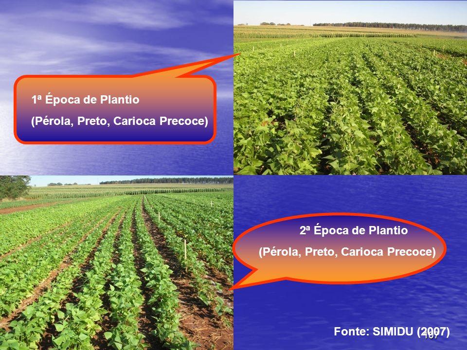 2ª Época de Plantio (Pérola, Preto, Carioca Precoce) 1ª Época de Plantio Fonte: SIMIDU (2007)