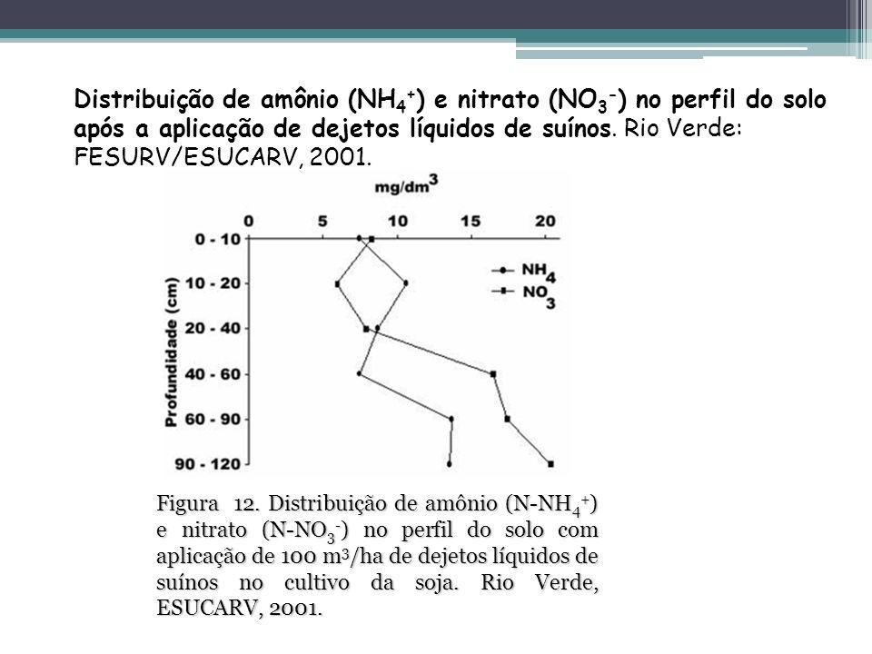 Distribuição de amônio (NH4+) e nitrato (NO3-) no perfil do solo após a aplicação de dejetos líquidos de suínos. Rio Verde: FESURV/ESUCARV, 2001.