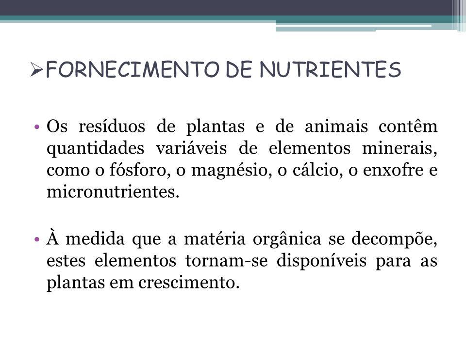 FORNECIMENTO DE NUTRIENTES