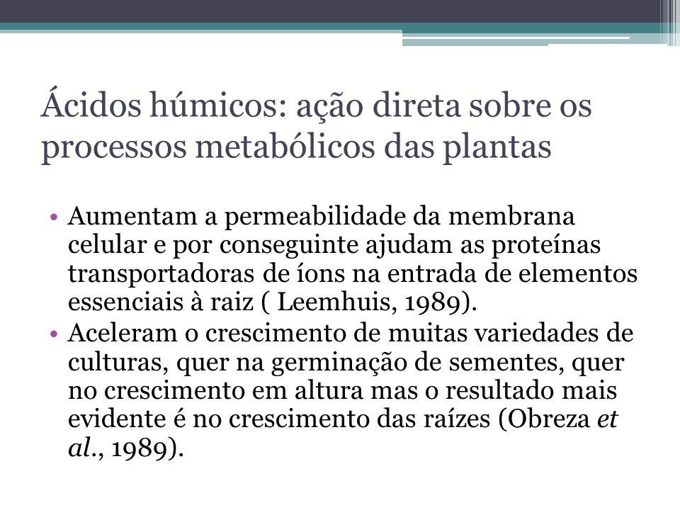 Ácidos húmicos: ação direta sobre os processos metabólicos das plantas
