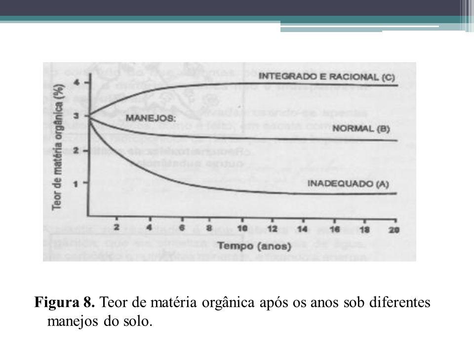 Figura 8. Teor de matéria orgânica após os anos sob diferentes manejos do solo.