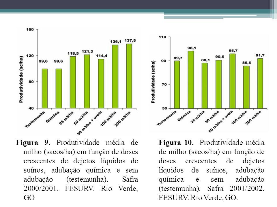 Figura 9. Produtividade média de milho (sacos/ha) em função de doses crescentes de dejetos líquidos de suínos, adubação química e sem adubação (testemunha). Safra 2000/2001. FESURV. Rio Verde, GO