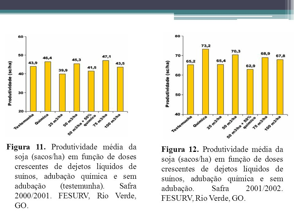 Figura 11. Produtividade média da soja (sacos/ha) em função de doses crescentes de dejetos líquidos de suínos, adubação química e sem adubação (testemunha). Safra 2000/2001. FESURV, Rio Verde, GO.