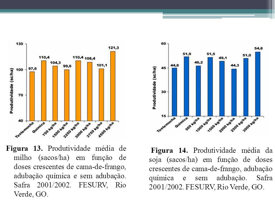 Figura 13. Produtividade média de milho (sacos/ha) em função de doses crescentes de cama-de-frango, adubação química e sem adubação. Safra 2001/2002. FESURV, Rio Verde, GO.