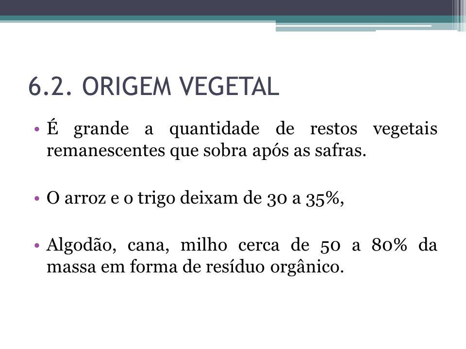 6.2. ORIGEM VEGETAL É grande a quantidade de restos vegetais remanescentes que sobra após as safras.
