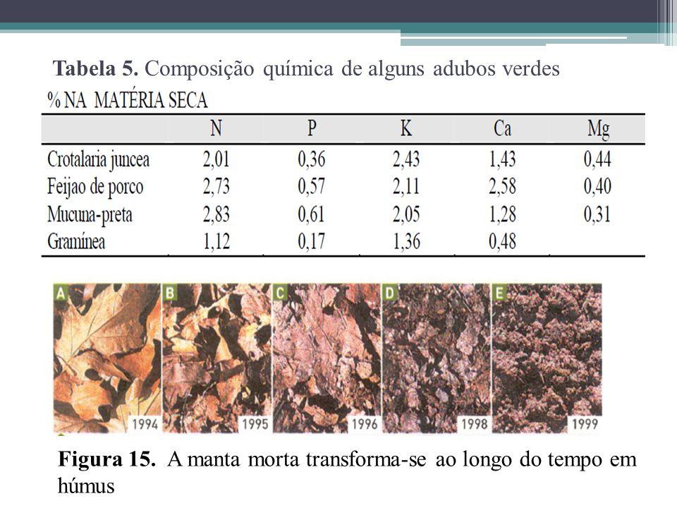Tabela 5. Composição química de alguns adubos verdes
