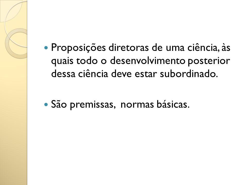 Proposições diretoras de uma ciência, às quais todo o desenvolvimento posterior dessa ciência deve estar subordinado.