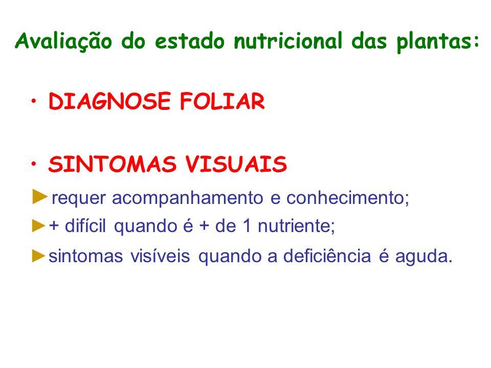 Avaliação do estado nutricional das plantas: