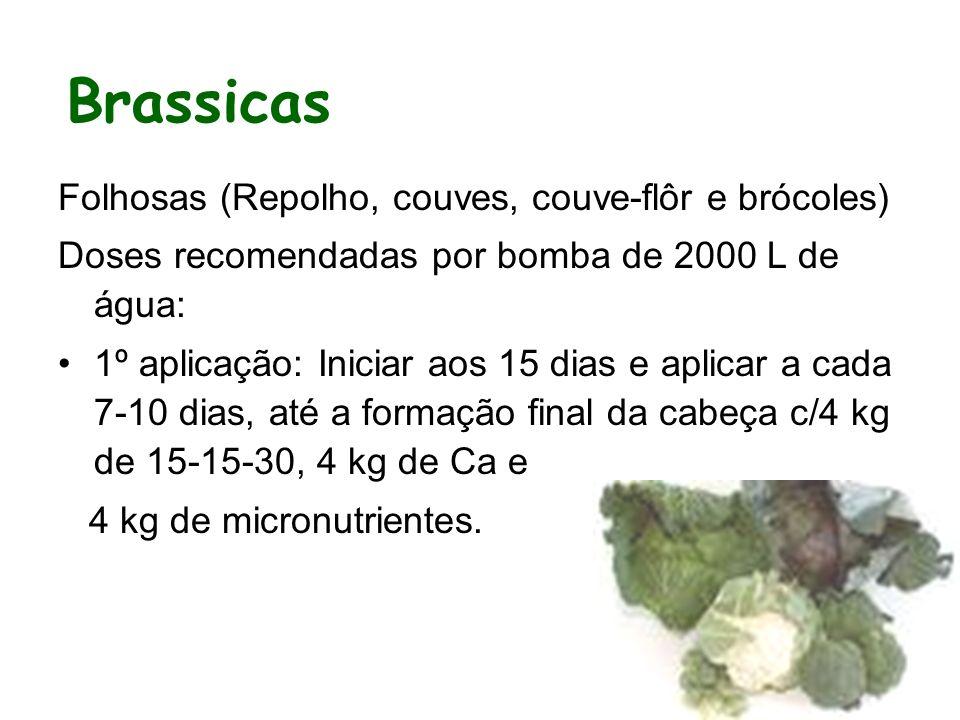 Brassicas Folhosas (Repolho, couves, couve-flôr e brócoles)