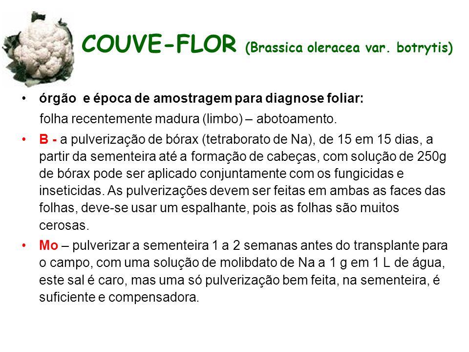 COUVE-FLOR (Brassica oleracea var. botrytis)