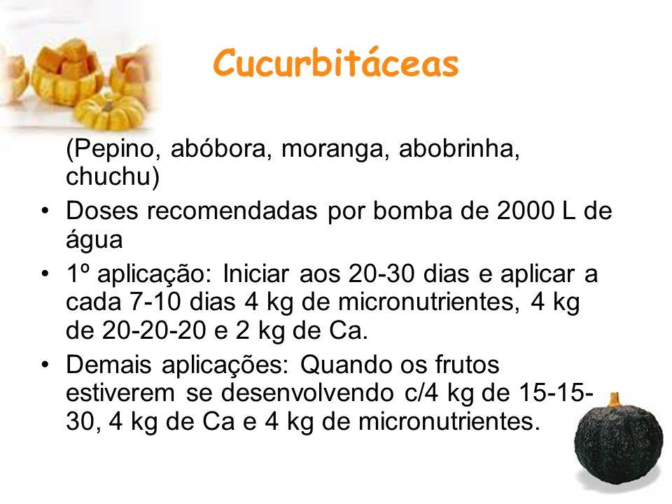 Cucurbitáceas (Pepino, abóbora, moranga, abobrinha, chuchu)
