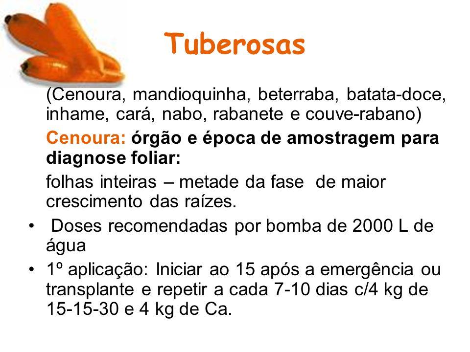 Tuberosas (Cenoura, mandioquinha, beterraba, batata-doce, inhame, cará, nabo, rabanete e couve-rabano)