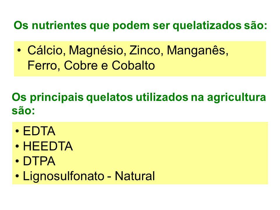 Os nutrientes que podem ser quelatizados são: