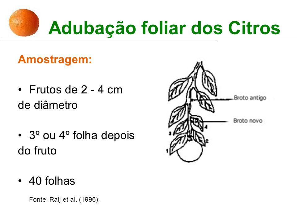 Adubação foliar dos Citros