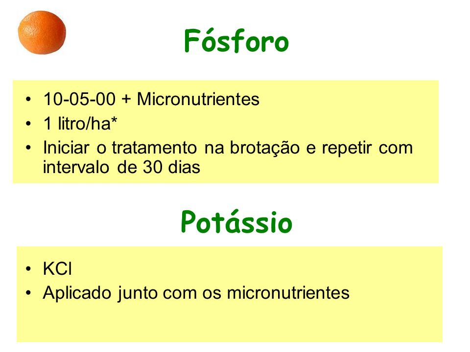 Fósforo Potássio 10-05-00 + Micronutrientes 1 litro/ha*