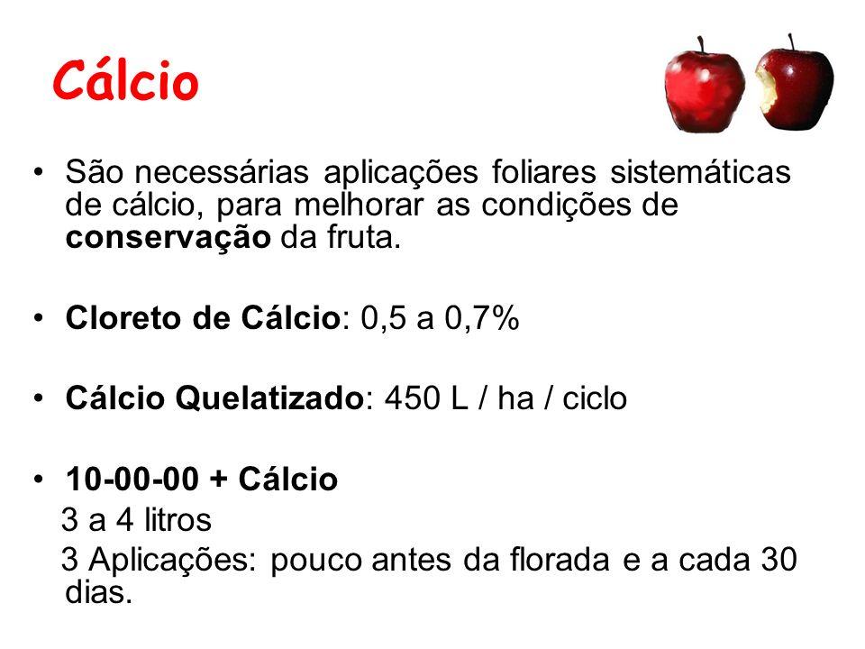 Cálcio São necessárias aplicações foliares sistemáticas de cálcio, para melhorar as condições de conservação da fruta.