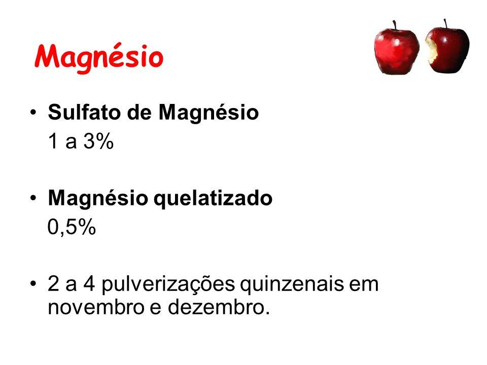 Magnésio Sulfato de Magnésio 1 a 3% Magnésio quelatizado 0,5%