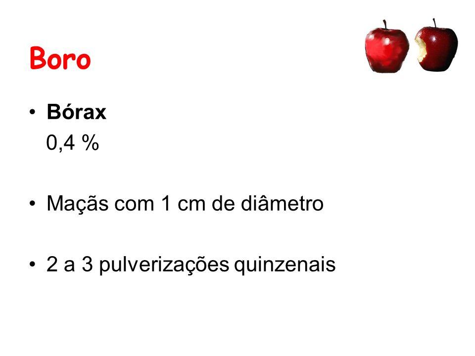 Boro Bórax 0,4 % Maçãs com 1 cm de diâmetro