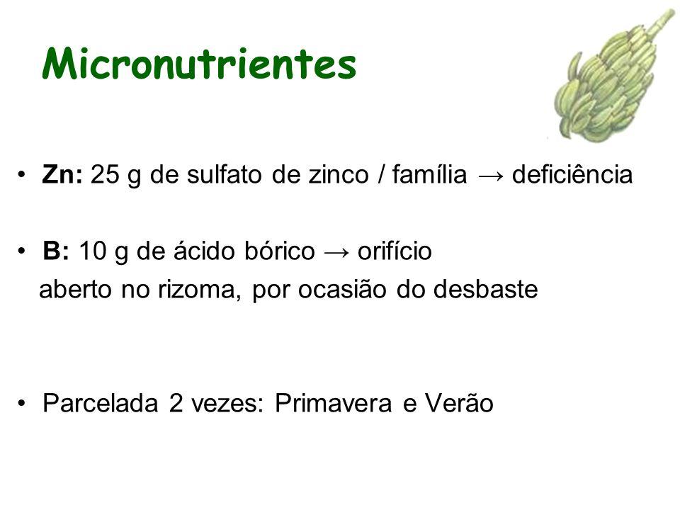 Micronutrientes Zn: 25 g de sulfato de zinco / família → deficiência