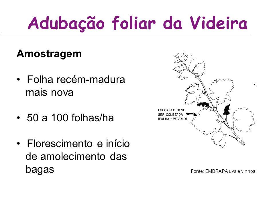 Adubação foliar da Videira