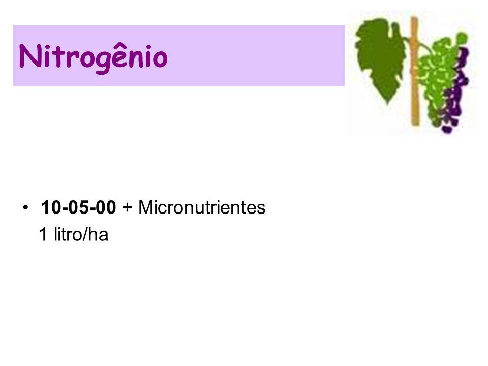 Nitrogênio 10-05-00 + Micronutrientes 1 litro/ha