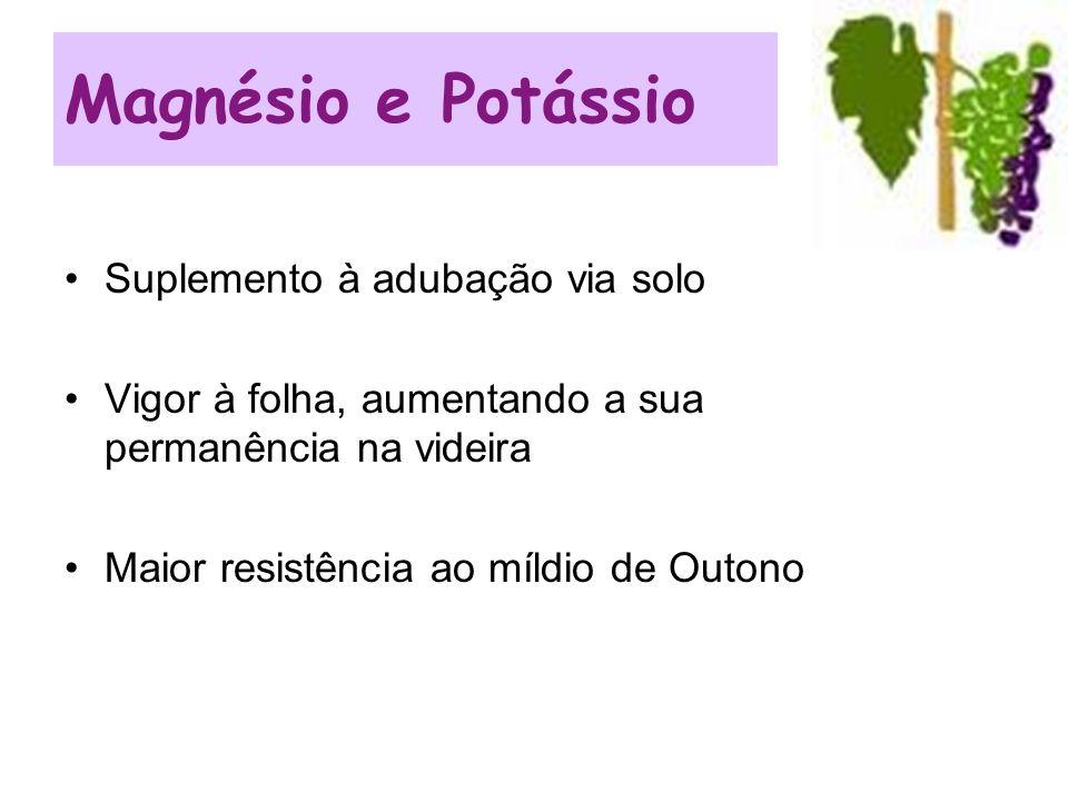 Magnésio e Potássio Suplemento à adubação via solo
