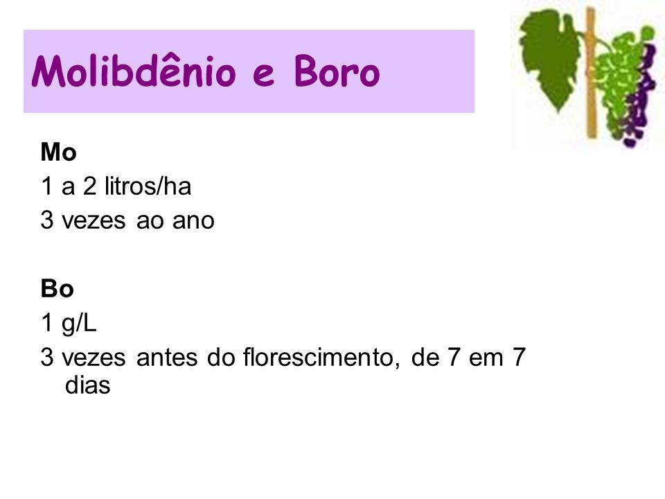 Molibdênio e Boro Mo 1 a 2 litros/ha 3 vezes ao ano Bo 1 g/L