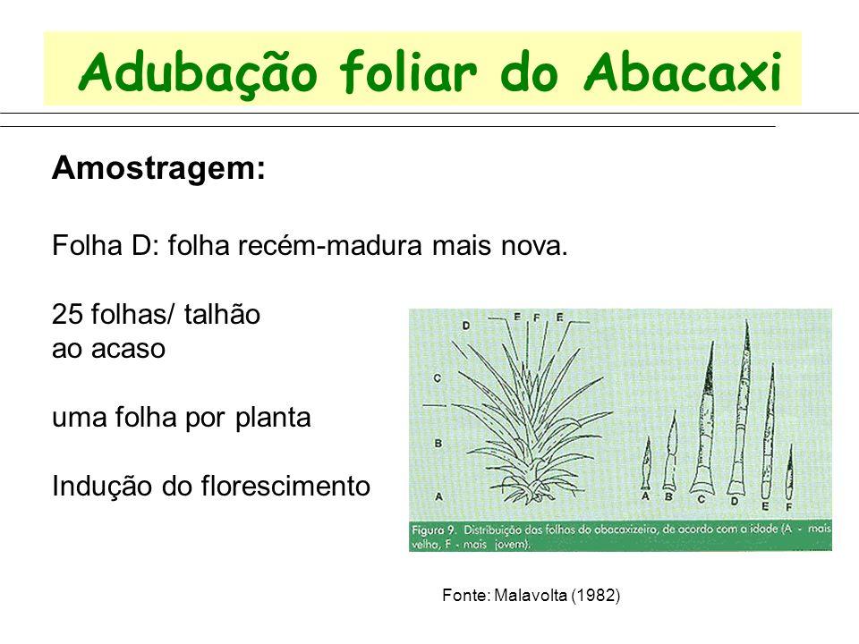Adubação foliar do Abacaxi