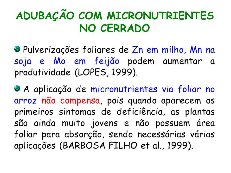 ADUBAÇÃO COM MICRONUTRIENTES NO CERRADO
