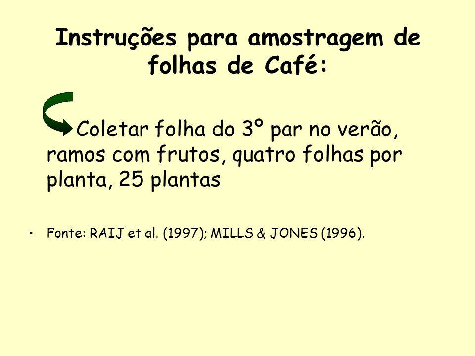 Instruções para amostragem de folhas de Café: