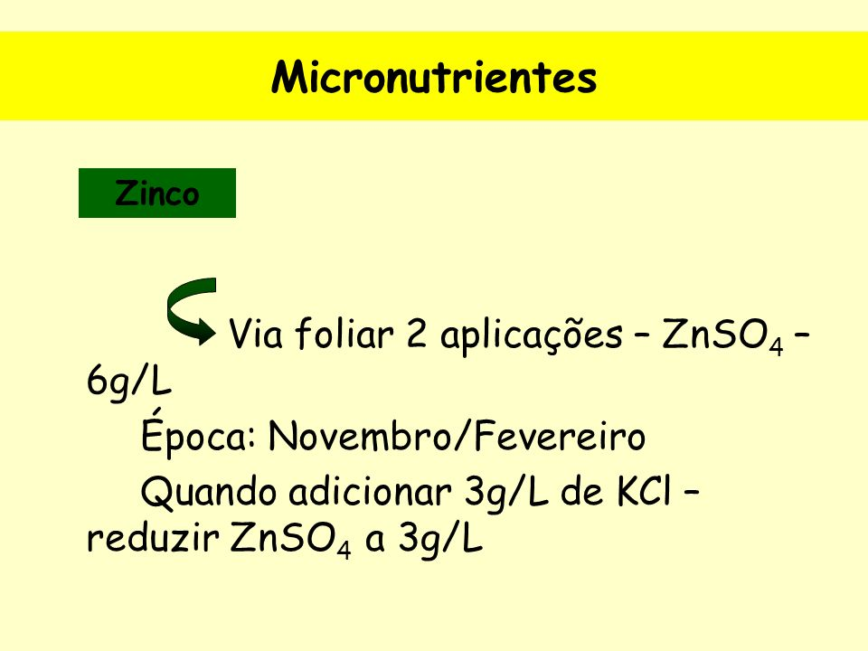 Micronutrientes Via foliar 2 aplicações – ZnSO4 – 6g/L