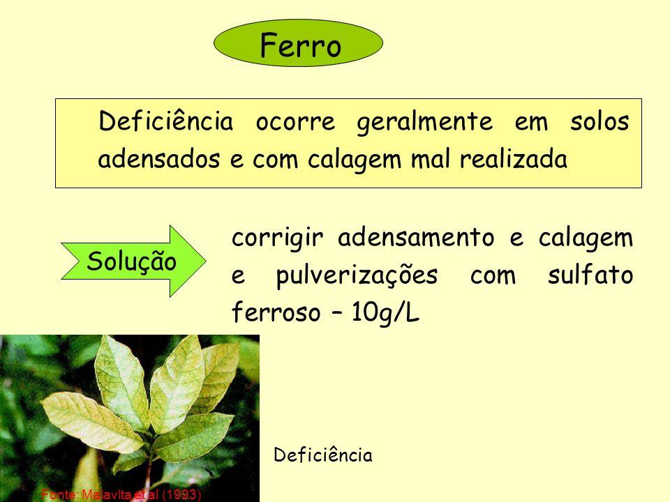 Ferro Deficiência ocorre geralmente em solos adensados e com calagem mal realizada.