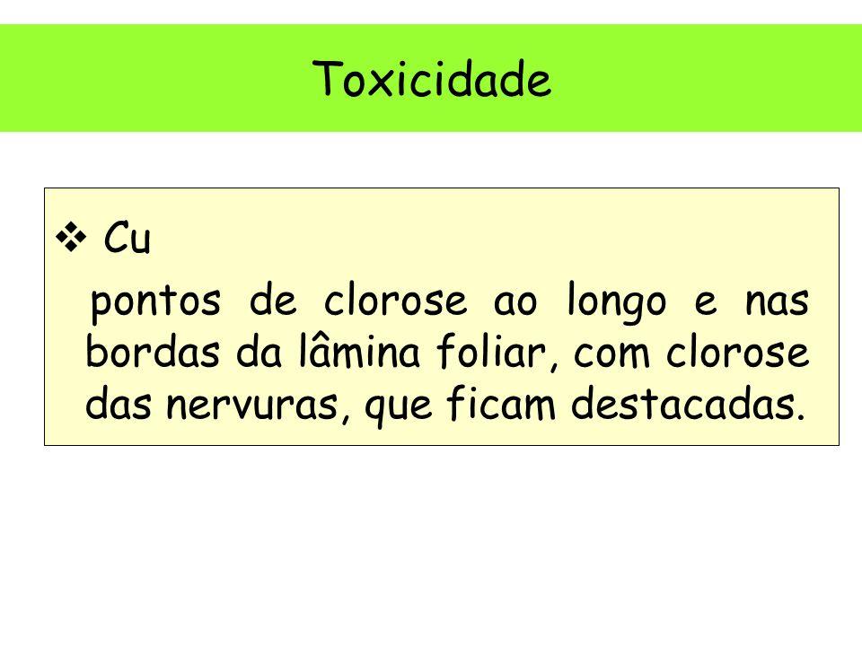 Toxicidade Cu.