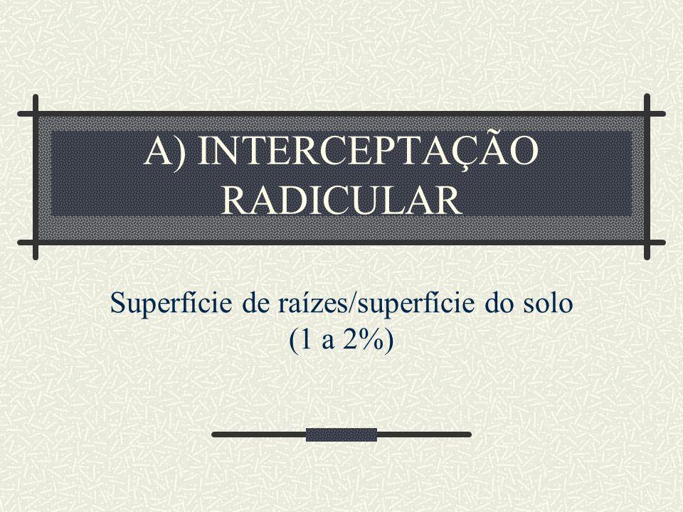 A) INTERCEPTAÇÃO RADICULAR