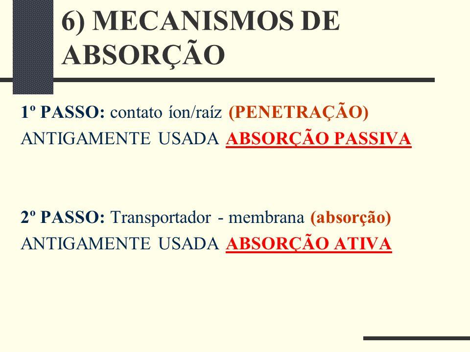 6) MECANISMOS DE ABSORÇÃO