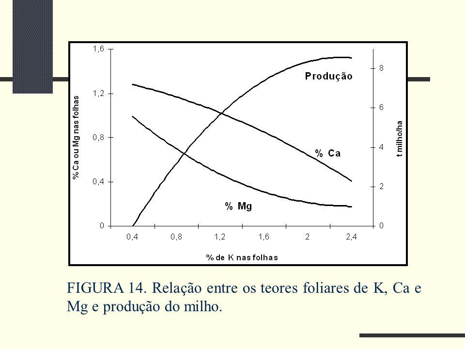 FIGURA 14. Relação entre os teores foliares de K, Ca e Mg e produção do milho.