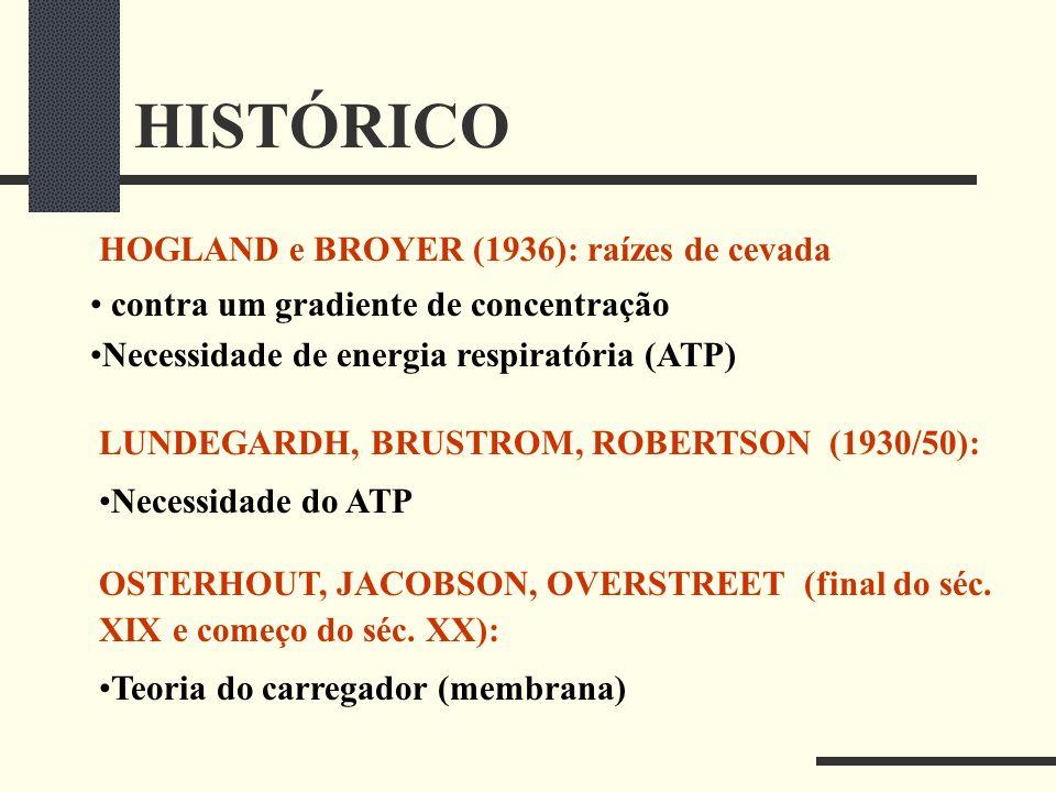HISTÓRICO HOGLAND e BROYER (1936): raízes de cevada