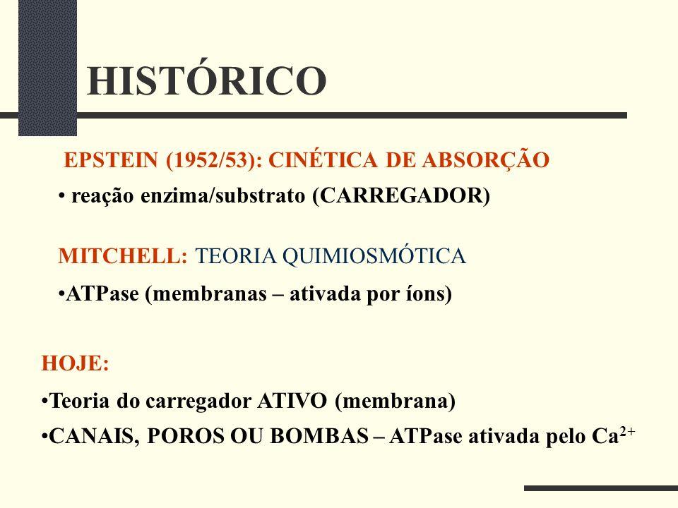 HISTÓRICO EPSTEIN (1952/53): CINÉTICA DE ABSORÇÃO