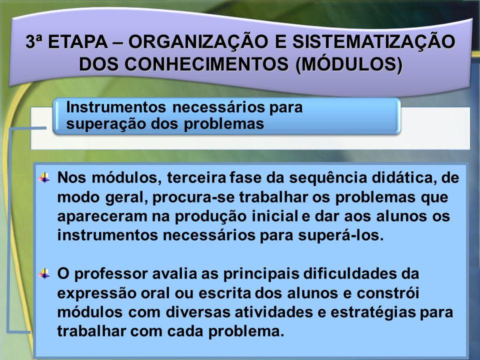 3ª ETAPA – ORGANIZAÇÃO E SISTEMATIZAÇÃO DOS CONHECIMENTOS (MÓDULOS)